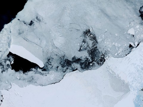 Record melting at the world's largest ice shelf is terrifying climate experts