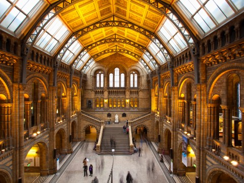 International Museum Day: 9 museums to visit in the UK this summer