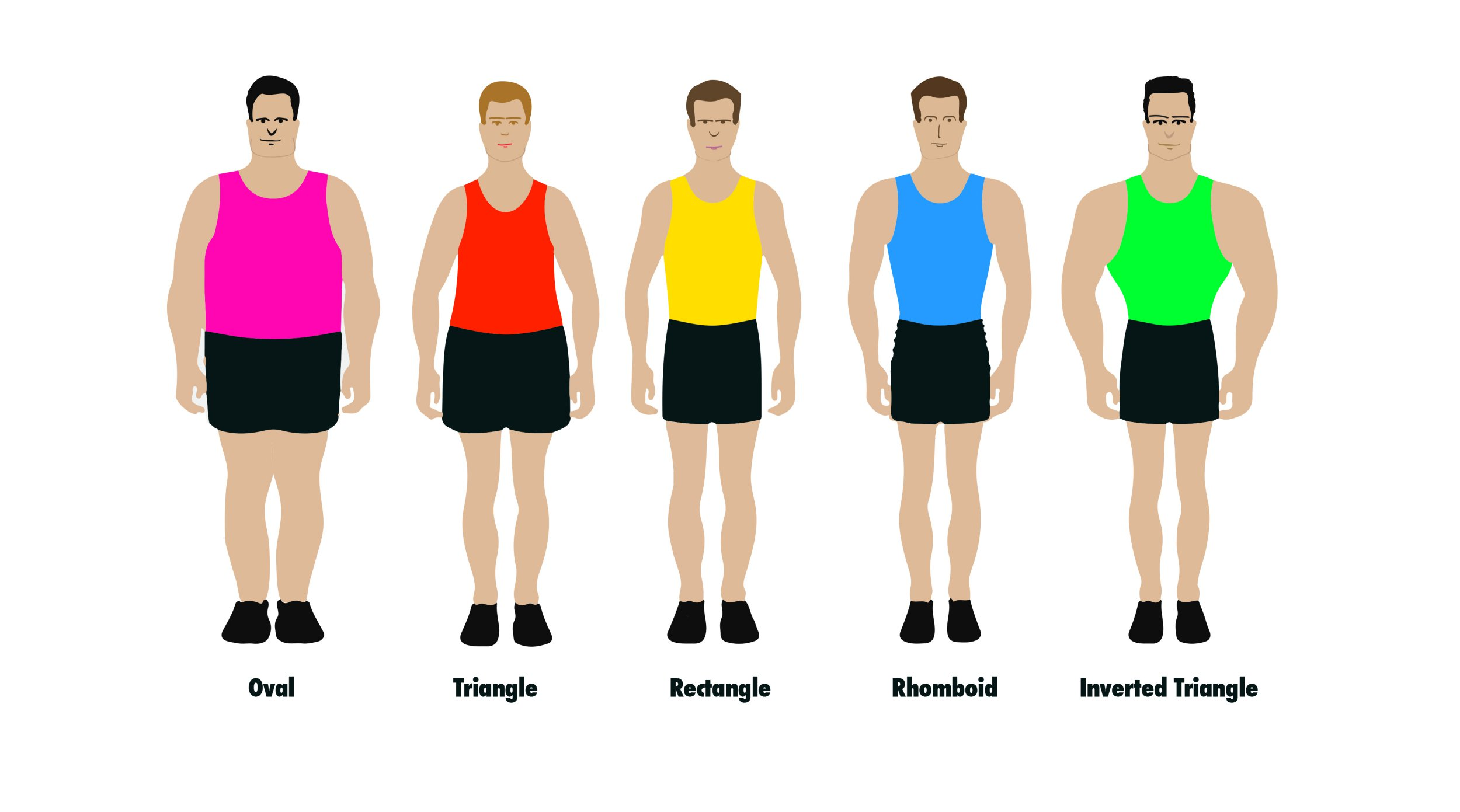 There are only five male body shapes, according to health experts