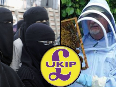 Ukip calls for full face cover ban (except for beekeepers)