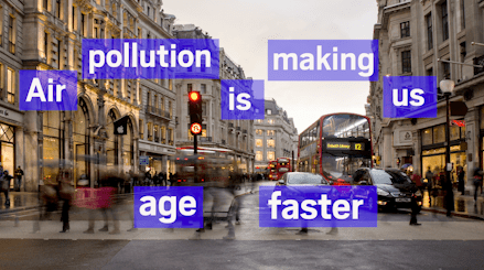 Air pollution is making us age faster