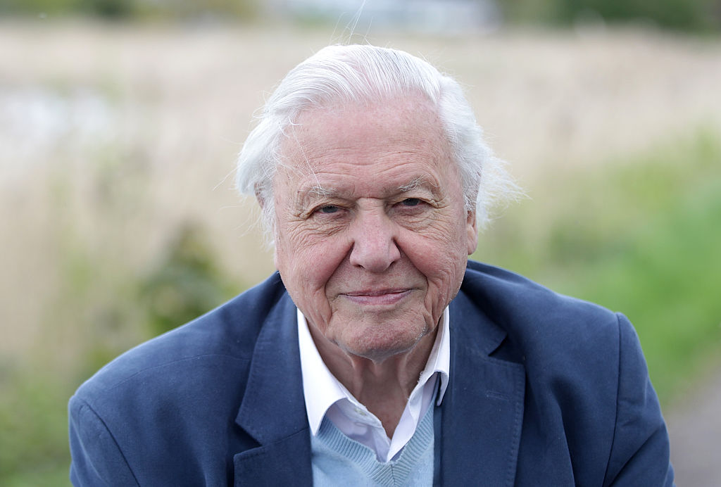 David Attenborough promises he will keep on presenting even when he's 100
