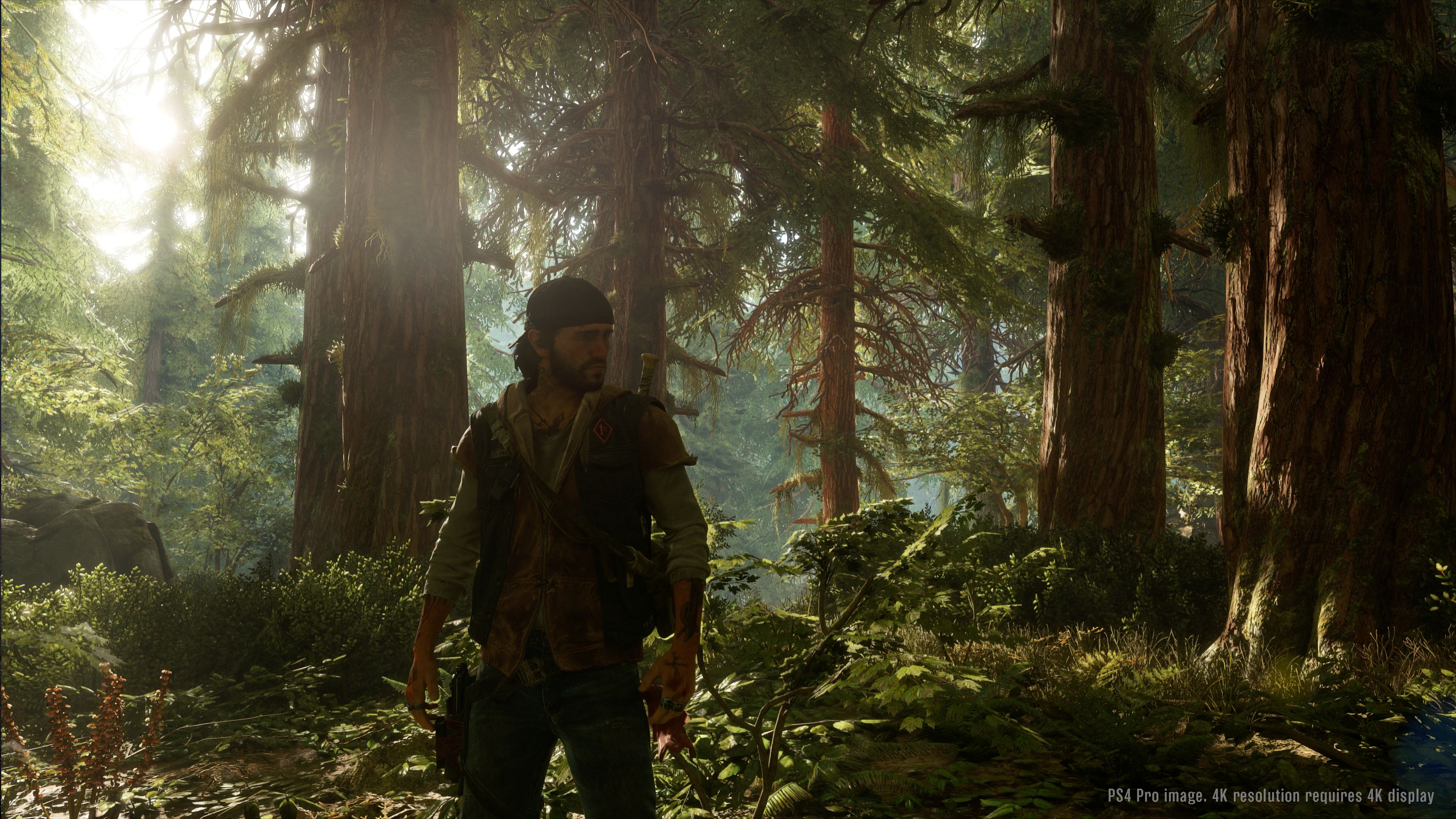 Days Gone - The Last of Horzon