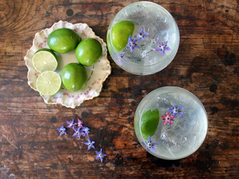 13 summery gin-based cocktails perfect for BBQs, garden parties or any occasion really