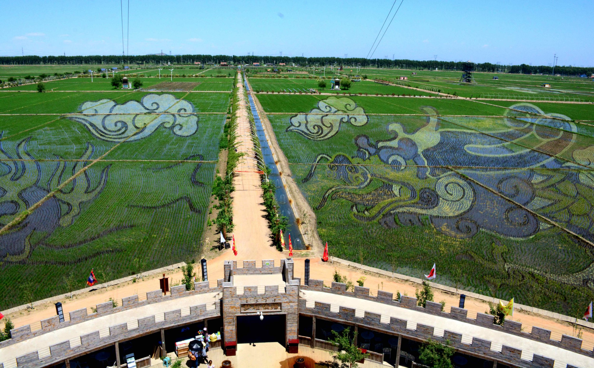 Farmers in China have created incredibly beautiful art in rice paddies