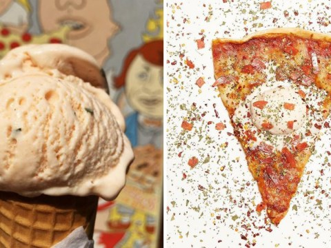 Pizza-flavoured ice cream now exists, obviously