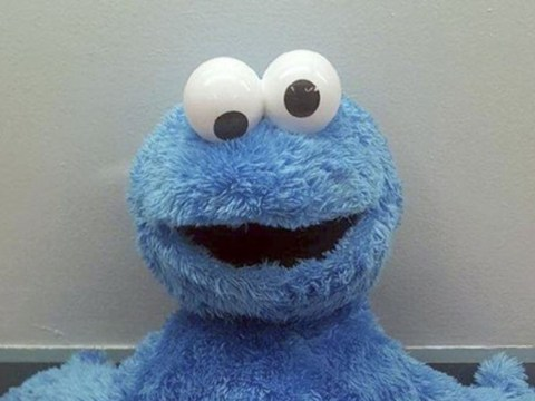 Cop finds 312 grams of cocaine stuffed inside Cookie Monster toy