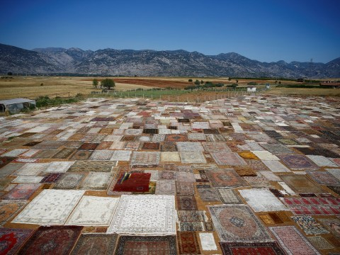 Turkey's 'hand-made' carpet fields are a sight to be seen