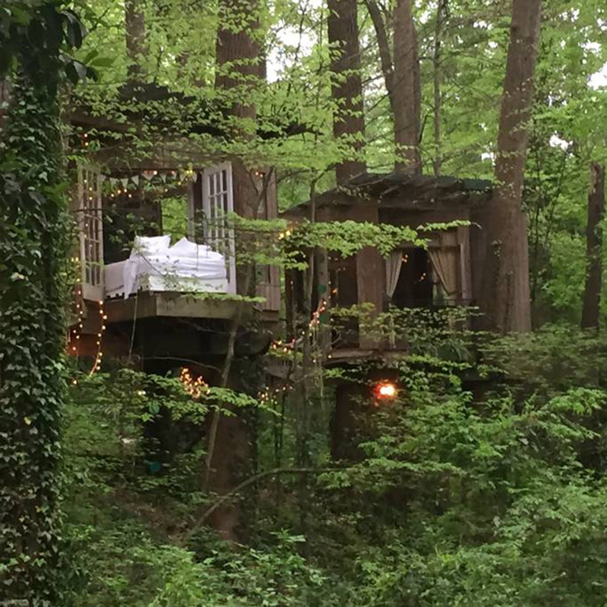 The Most Popular Listing On Airbnb Is A Secluded Treehouse