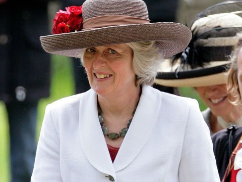 Who is Lady Jane Fellowes, Prince Harry's family member giving a reading for Diana at the royal wedding