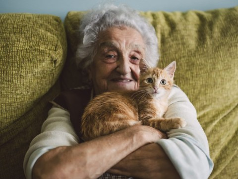 Co-op Funeralcare has launched special pet cards so your pets won't be left alone if you're ill or injured