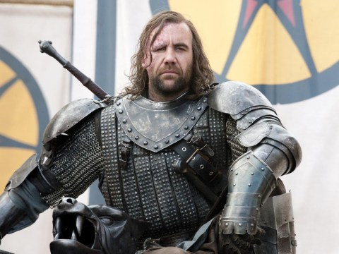 Who plays The Hound in Game Of Thrones and what else has he been in?