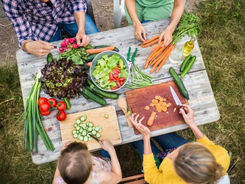 World Vegetarian Day want you to go veggie for October – here's why