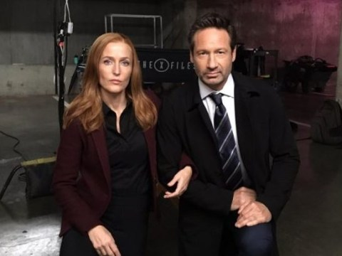 Don't panic but Gillian Anderson believes that the next season of The X-Files will be her last