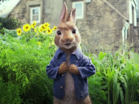 Here's the trailer for the new Peter Rabbit movie – and it's a total disaster