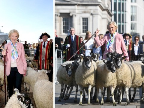 Baahhhrmy? TV chef Mary Berry herds a flock of sheep over London Bridge