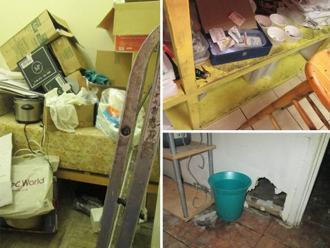 Chinese takeaway owner fined £2,000 after inspectors find decomposing rat