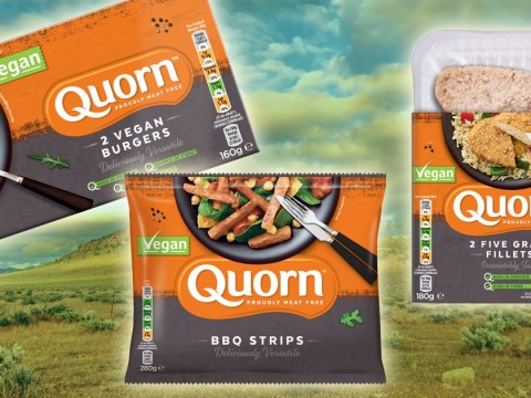 Rejoice, for Quorn is releasing more vegan products