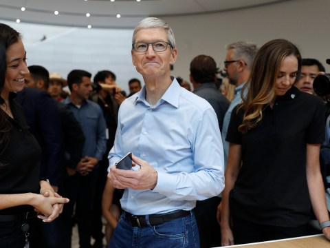 Here's what Apple CEO Tim Cook has to say about being gay