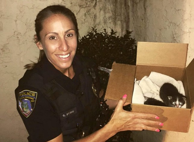 Policewoman has rescued and rehomed more than 63 cats and kittens