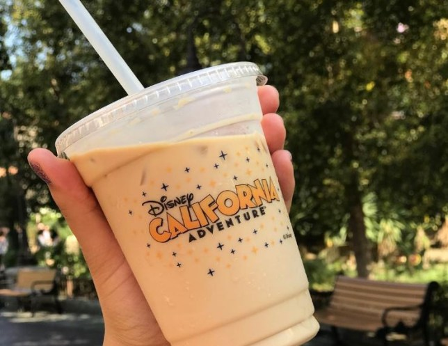 pumpkin pie latte at disneyland