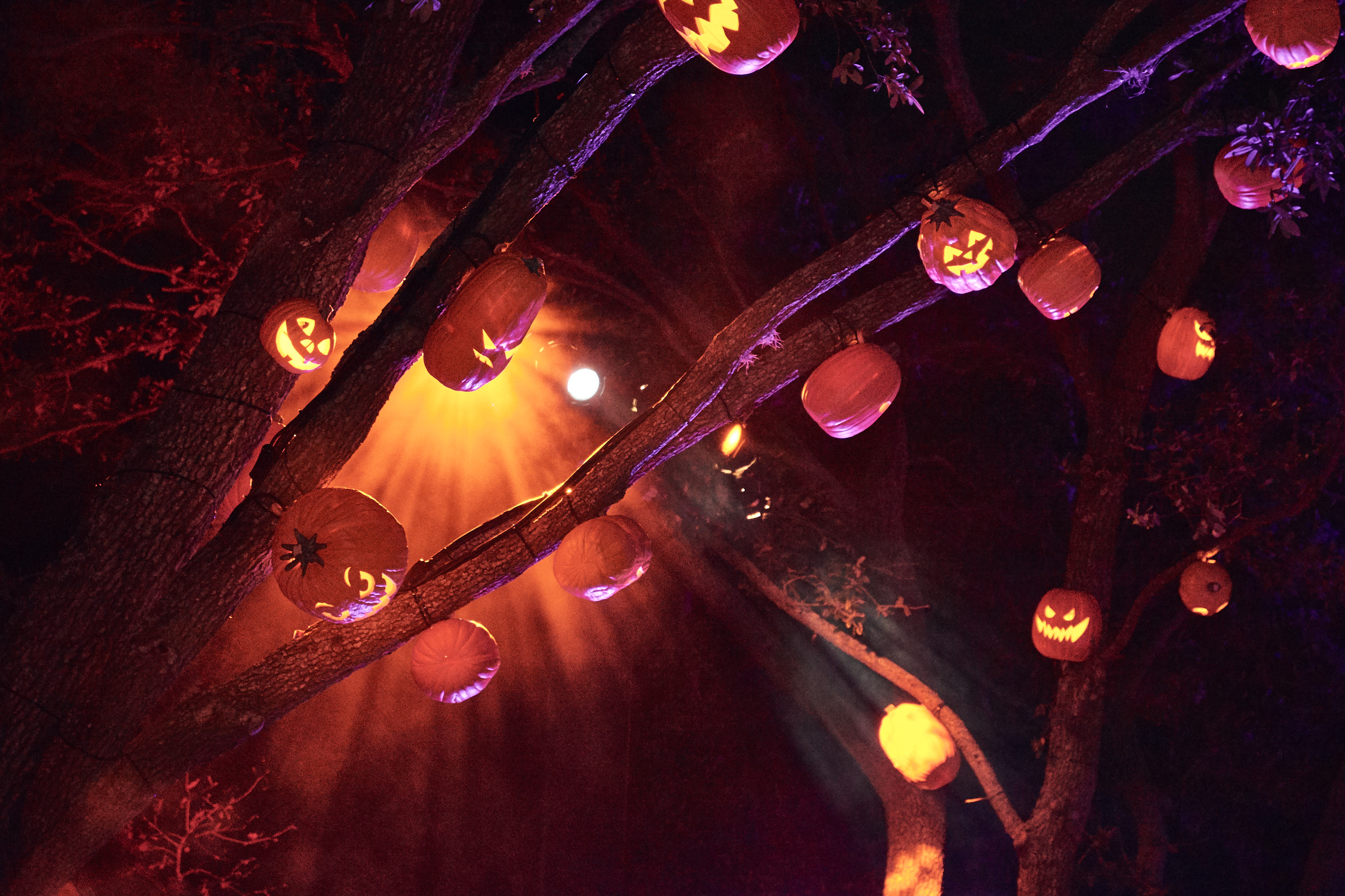 Halloween facts: 9 bad things that actually happened on Halloween