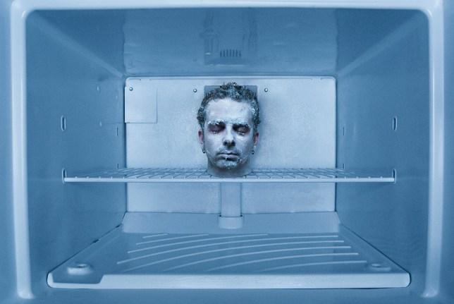 Male human head in freezer