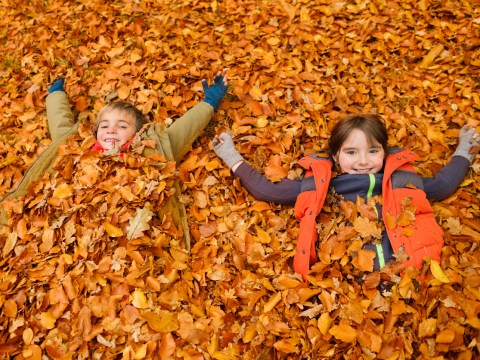 Eight awesome autumn crafts to try with your children