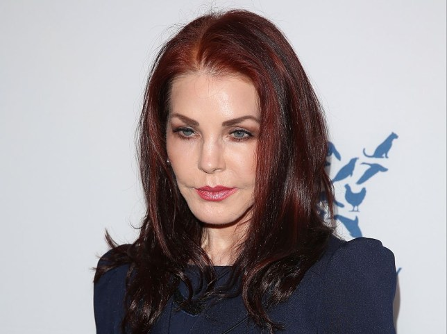 Priscilla Presley Opens Up About Elvis Presley S Final Days Metro News