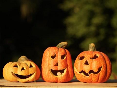 12 spectacularly spooky vegan Halloween recipes