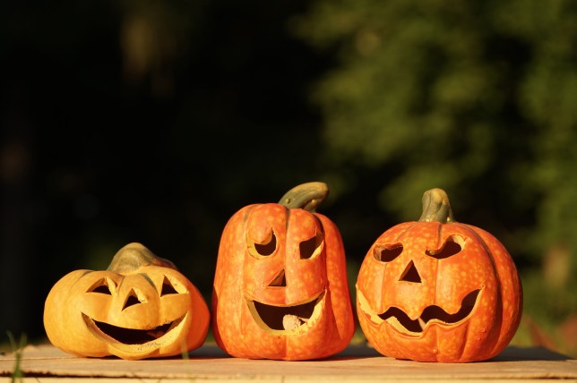 best value b9d2c 61c98 12 spectacularly spooky vegan Halloween recipes