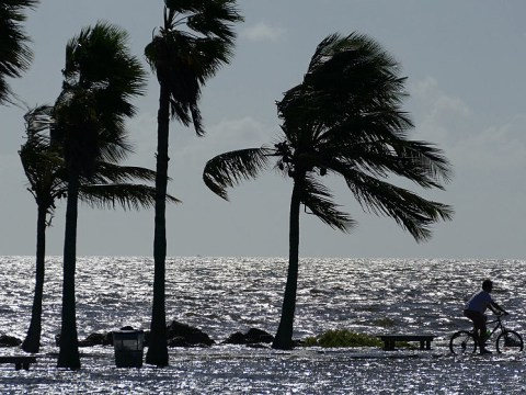 What is a King Tide? Miami braces itself for flooding