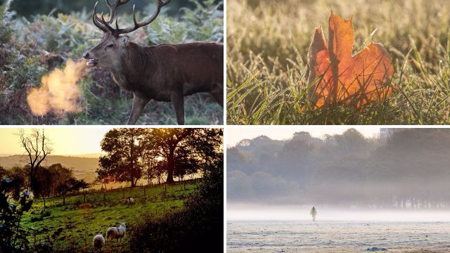 10 pictures to prove that autumn really is the best season