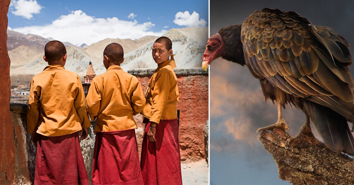Here's what's involved in a Tibetan sky burial