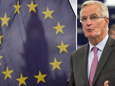 Follow EU standards or lose trade deals, warns Brexit negotiator