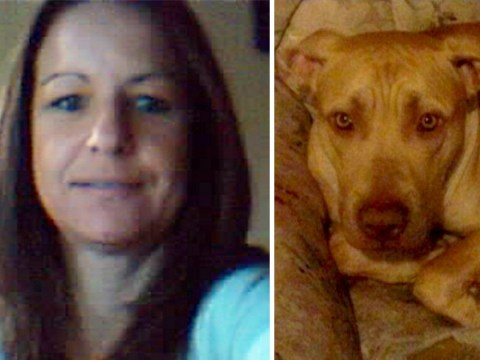 Mother mauled to death by her own dog as she tried to protect partner from attack