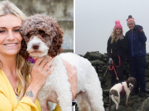 Woman reunited with her dog two weeks after it vanished up a mountain
