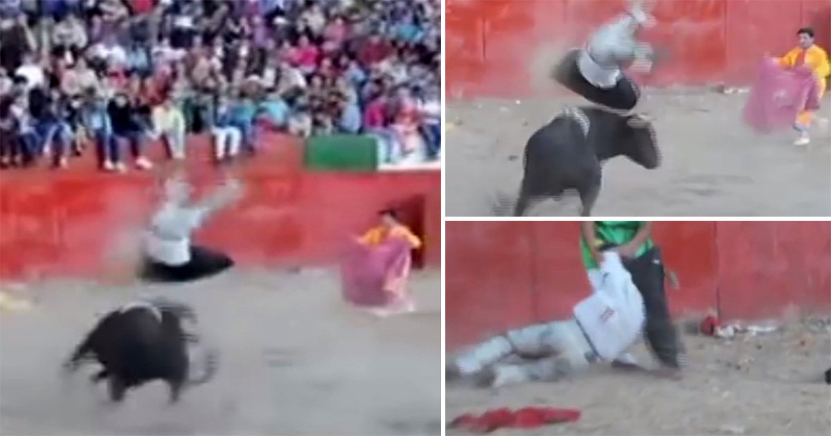 Bullfighter gored flung in the air by angry bull who later escaped