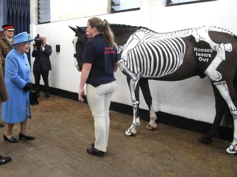 The Queen cracked a joke when she met this rather skeletal-looking horse