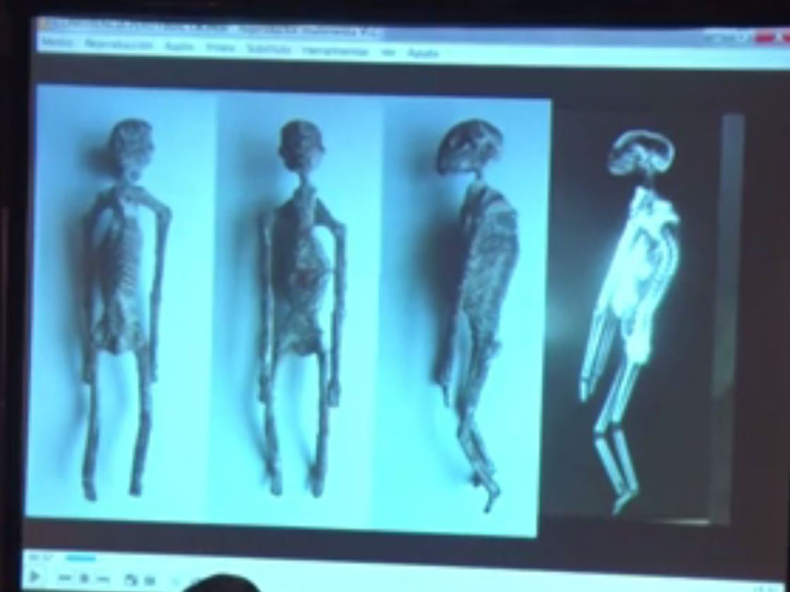 Sorry, those 'alien mummies' found in Peru are probably not real