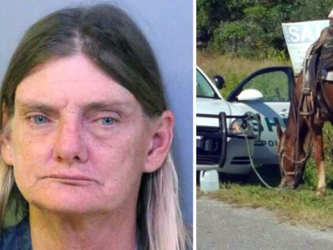 Woman arrested for drink driving a horse