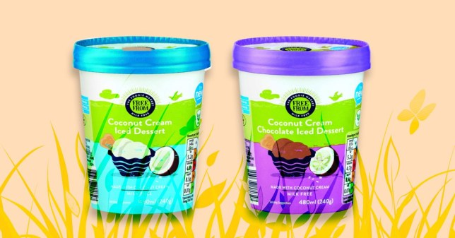 Aldi Launch Two New Vegan Dairy Free Ice Creams Both