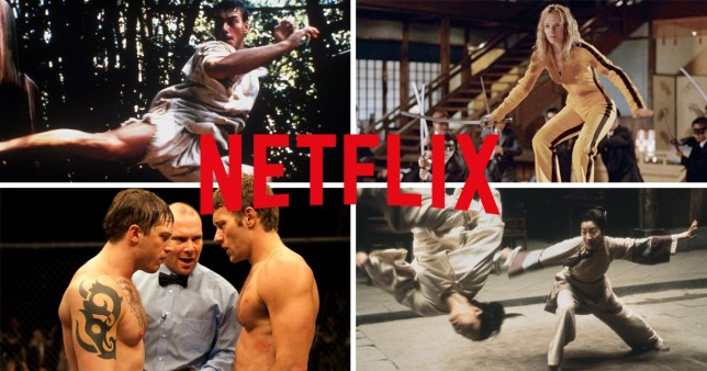 films on Netflix with the best martial arts sequence