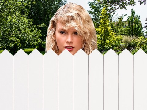 Taylor Swift is using those Reputation funds to erect huge wall around LA home