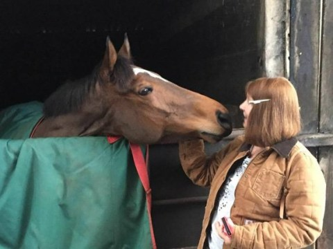 Horse killed in 'devastating' arson attack on stable