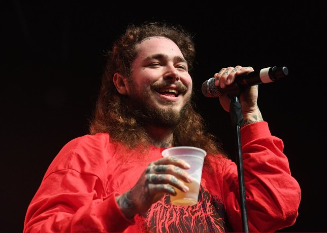 Post Malone, concert, performs, music