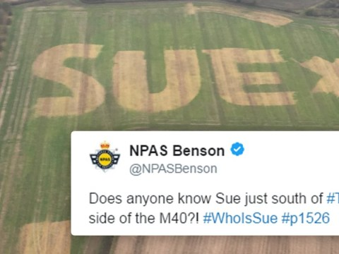 Who is Sue and why has she left a huge message in a field?