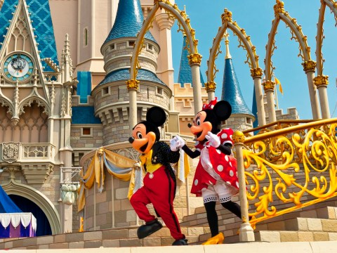 Disney employees are banned from pointing with their index finger while at work