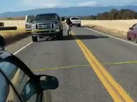 Five dead after school shooting as 100 cops search five scenes