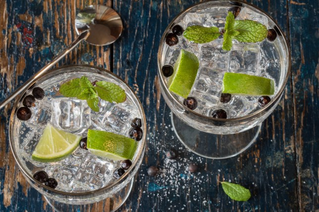 The 19 best gin distillery tours in the UK | Metro News